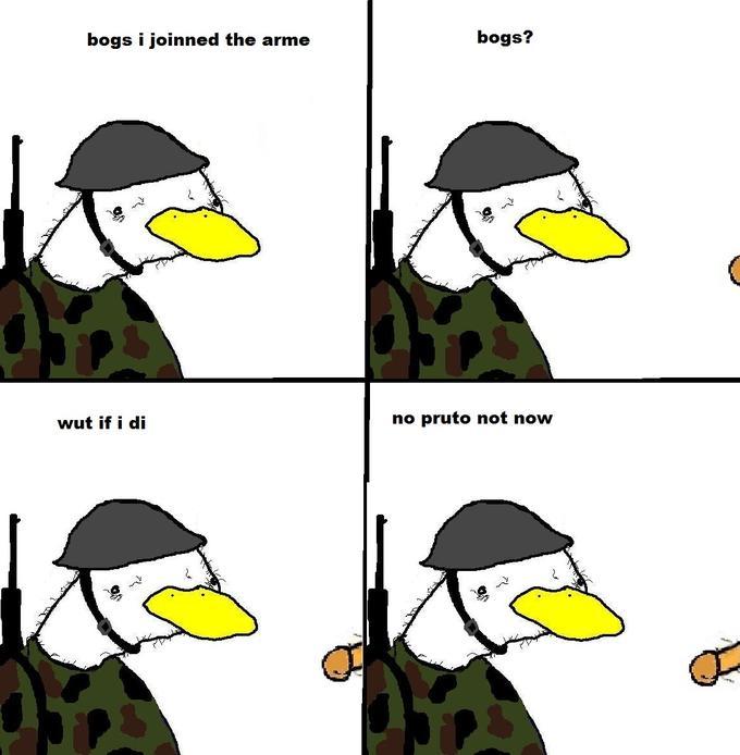 Dolan Army