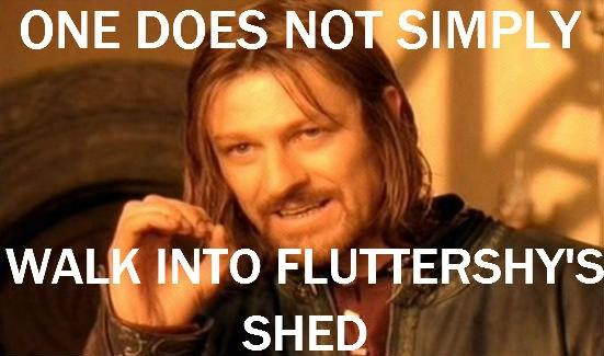 One does not simply walk into Fluttershy's shed