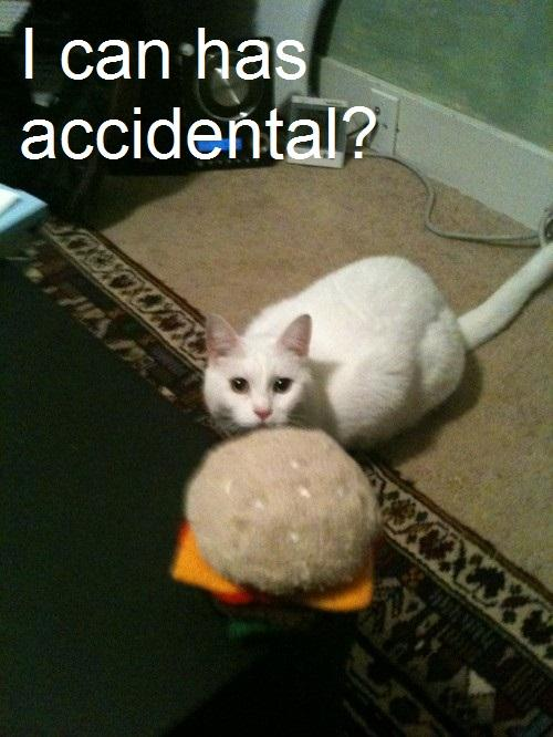 I CAN HAS ACCIDENT?