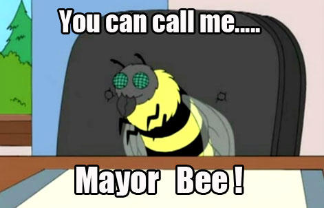 mayor_bee