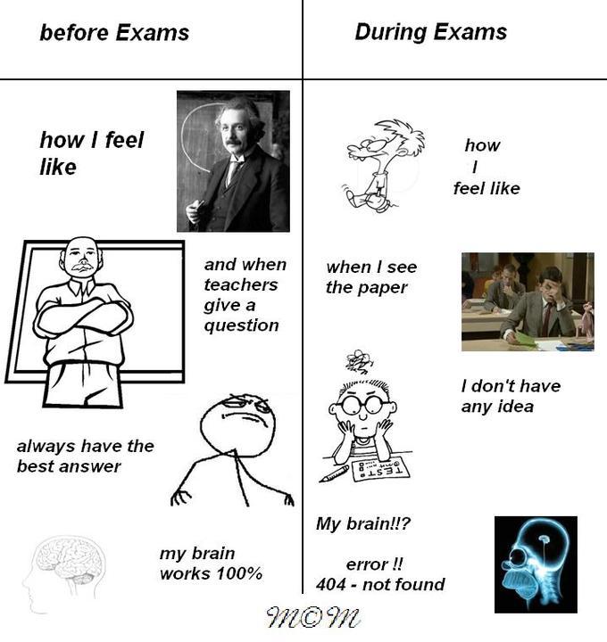 exams!!