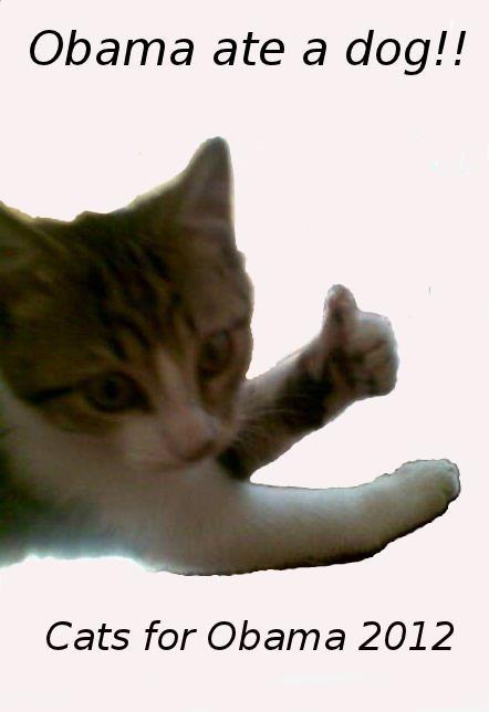 thumb_up_cat