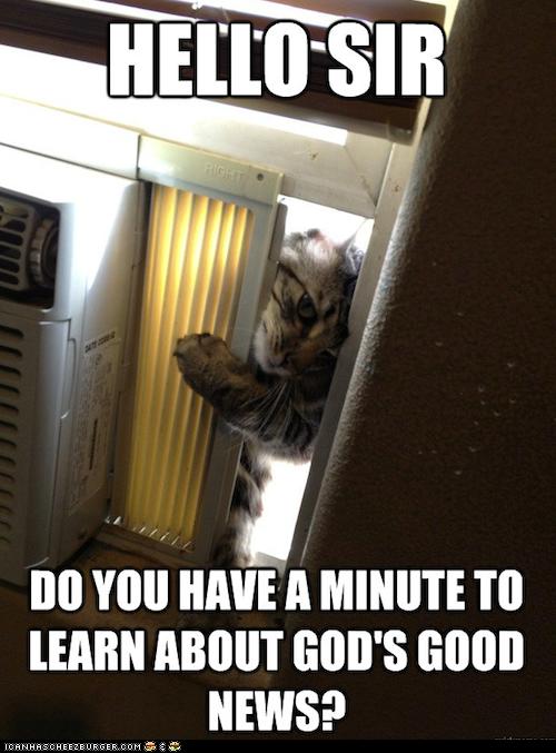 Jehova Cat