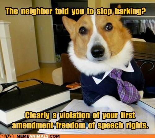 Lawyer Dog - Freedom of Speach