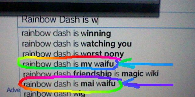 Rainbow Dash Is My Waifu