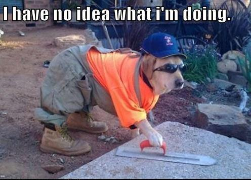 I have no idea what i'm doing - Dog Builder.