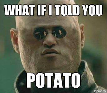 Potato | I Can Count to Potato | Know Your Meme Down Syndrome Meme Funny