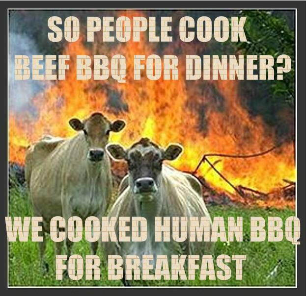 Evil Cows and BBQ