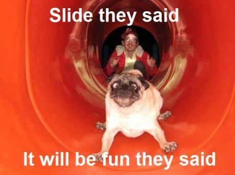 Slide they said