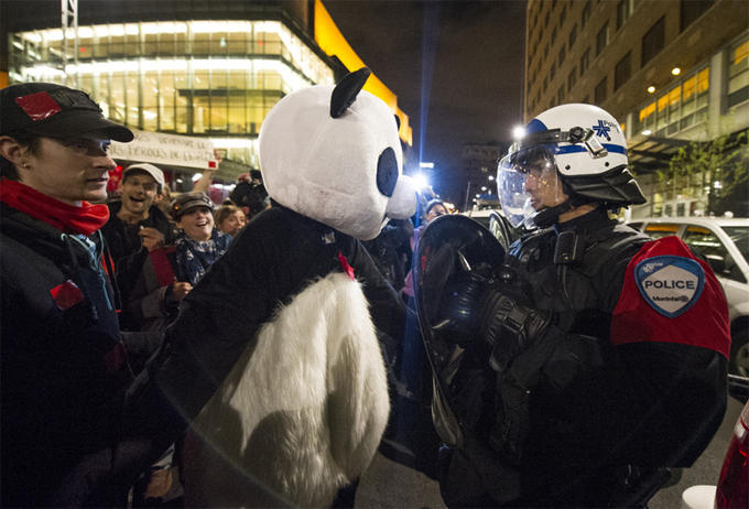 Anarchopanda, the Mascot of the Quebec Protests