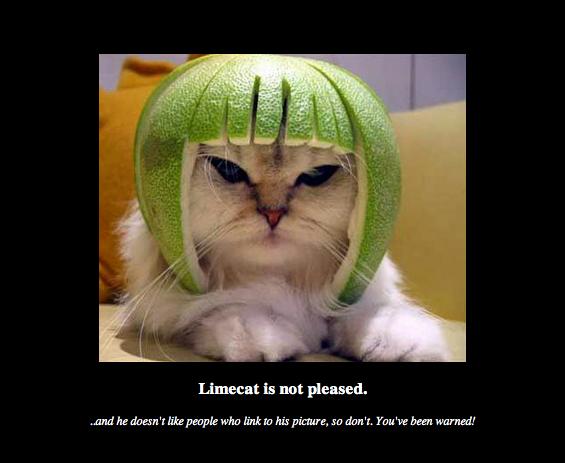 Limecat.net