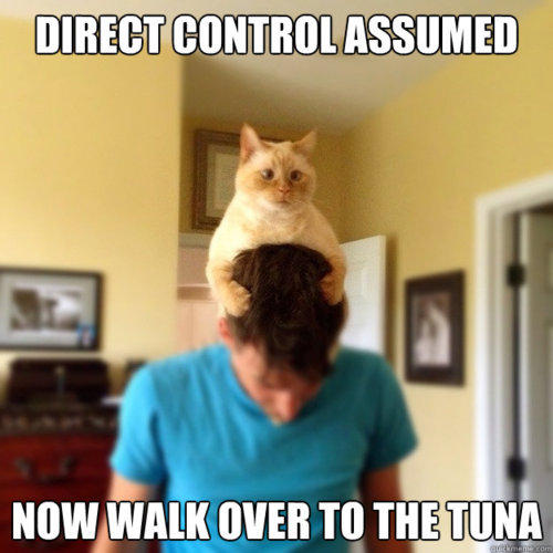 http://www.reddit.com/r/AdviceAnimals/comments/ufh6d/controll_cat/