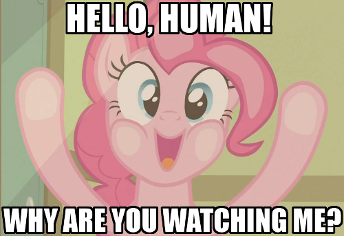 10a image 321313] pinkie pie breaking the 4th wall know your meme