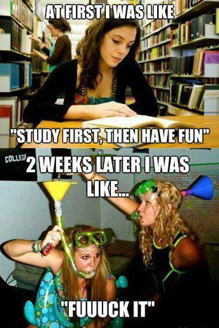 Party first, study never