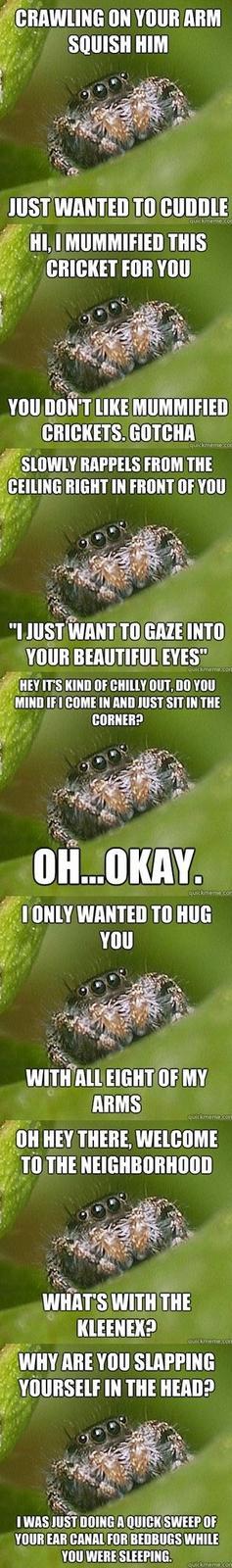 Missunderstood spider