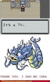 Gyarados You don't say