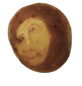 ecce potato