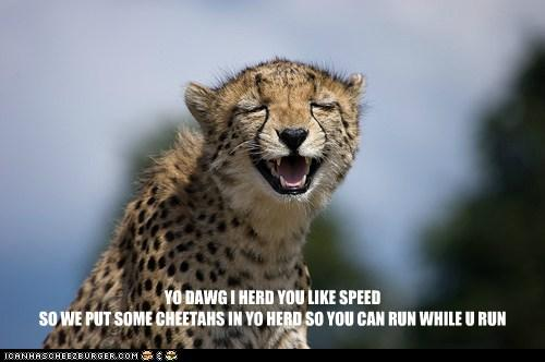 Yo dawg I herd you like speed