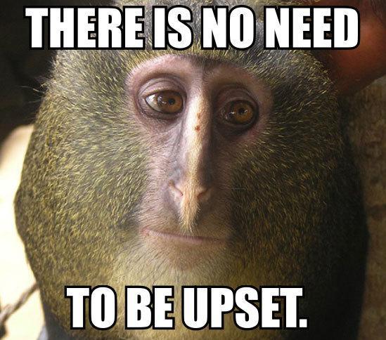 le new monkey face