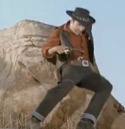 I used to be a cowboy...