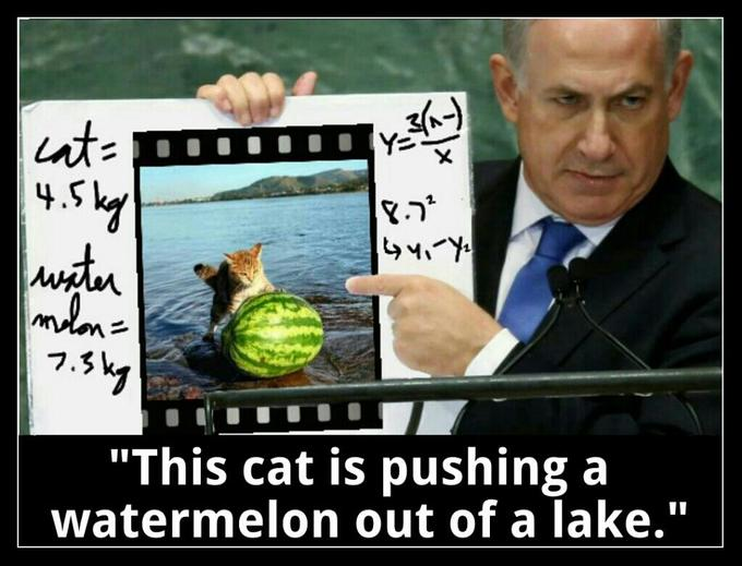 Netanyahu Discovers Watermelon Cat