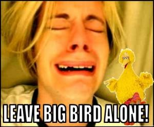 Leave Big Bird Alone