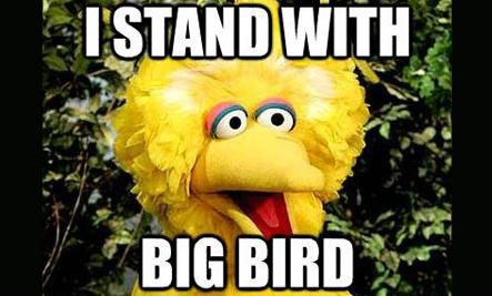I Stand with Big Bird