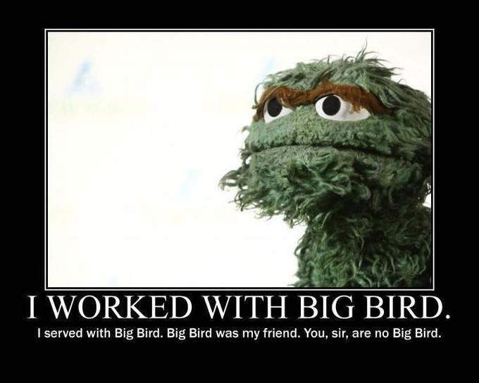 You, sir, are you Big Bird!