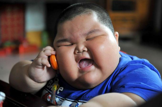 Lu Hao Phone Template