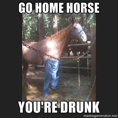 cb0 horse go home, you are drunk know your meme