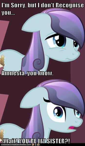 Amnesiac Crystal Pony (You're my What?)