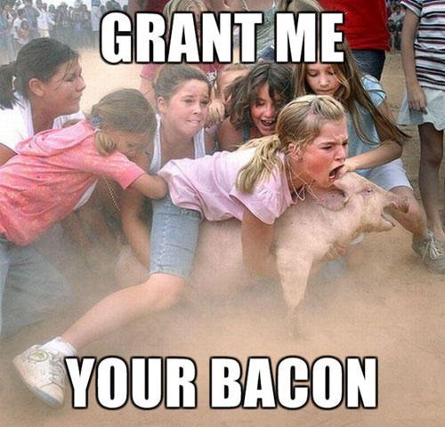 Girls Catching Pig