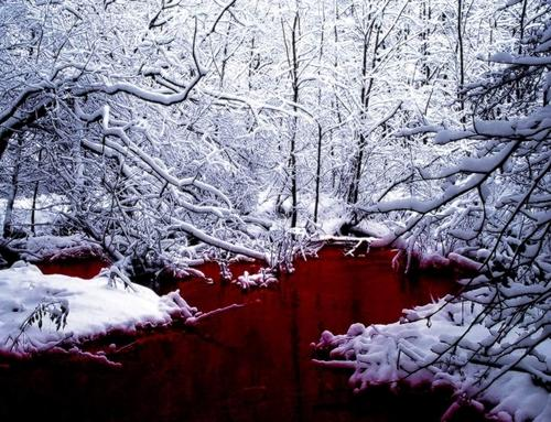 """SCP 354 """"The red pool"""""""