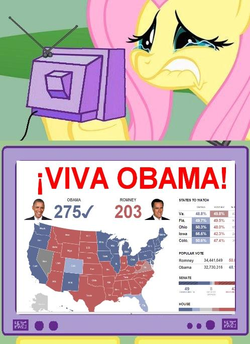Did you know Fluttershy is a Republican?