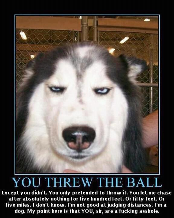 You threw it.