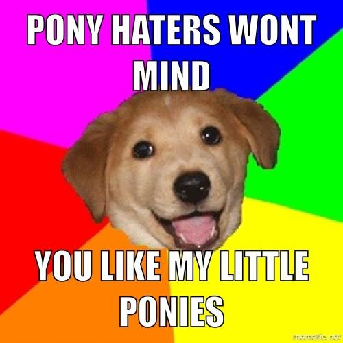 Advice dog:ponies
