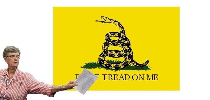 "Joan the Silencer silences the ""Gadsden Flag"""