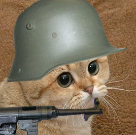 German Soldier Cat / Heil Kitler