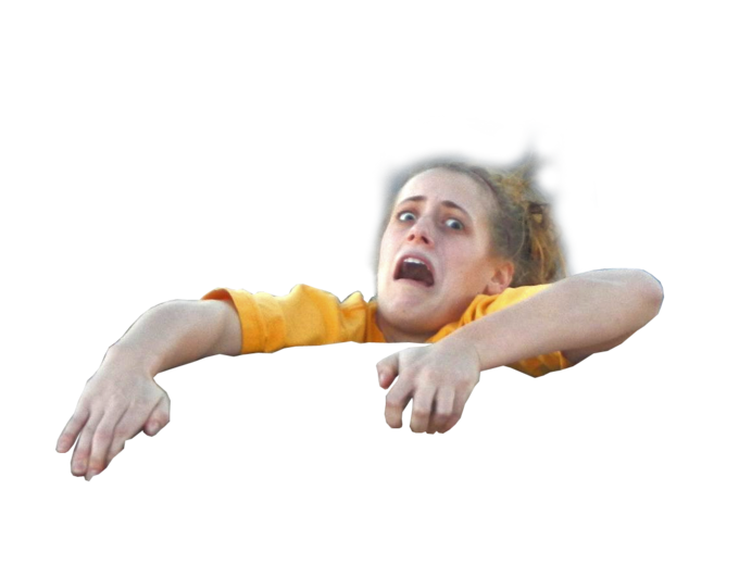 Mom was worried about me becoming a meme, I sent her this PNG