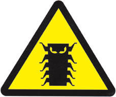 The Millennium Bug Symbol