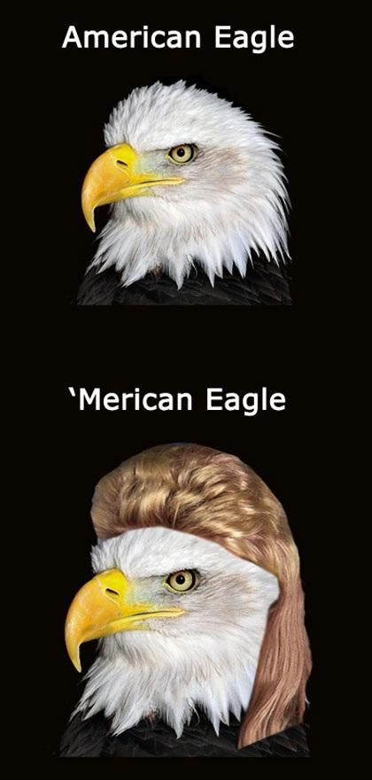 American Eagle | Name Puns | Know Your Meme