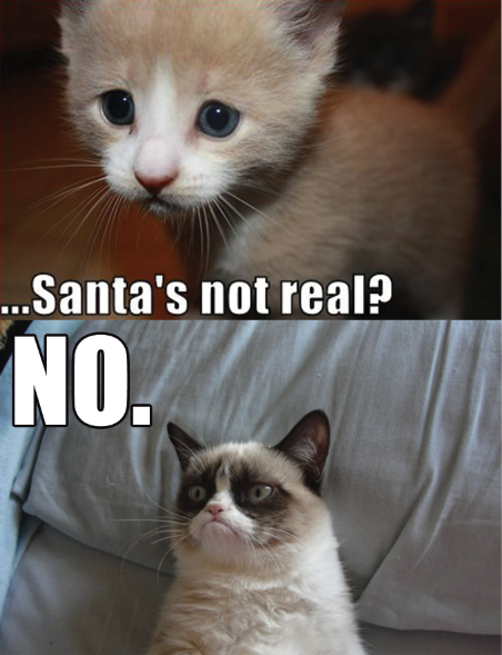 0fa santa? no! grumpy cat know your meme