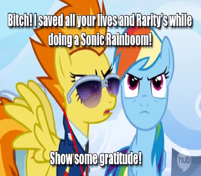 Bitch! I saved all your lives and Rarity's while doing a Sonicboom. Show some gratitude!
