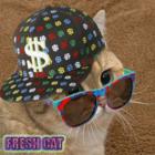 Fresh Cat