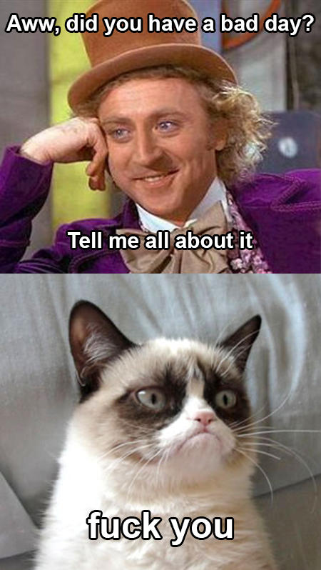 Grumpy Cat vs Wonka