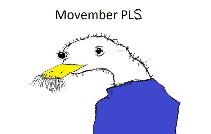MOVEMBER PLS