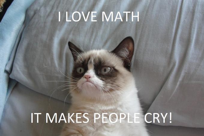 Grumpy cat math 2