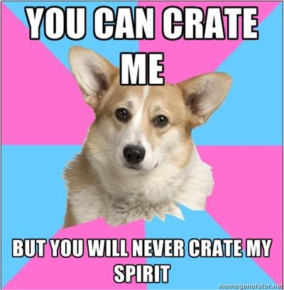 You Can Crate Me...But You Will Never Crate My Spirit