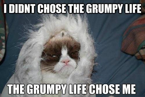 The Grumpy Life