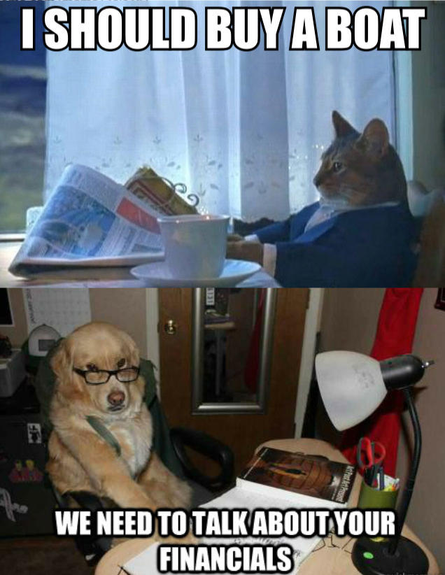 e84 financial advice dog know your meme